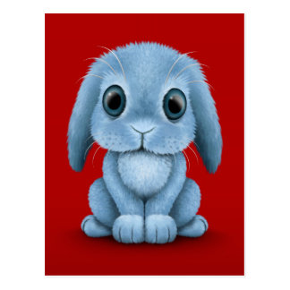 Cute Blue Baby Bunny Rabbit on Red Postcard