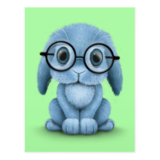 Cute Blue Baby Bunny Wearing Glasses on Green Postcard