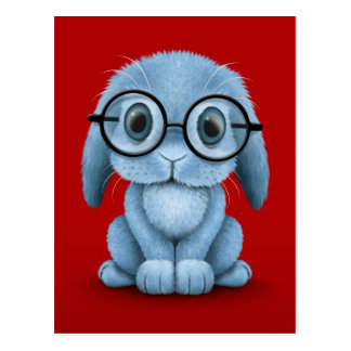 Cute Blue Baby Bunny Wearing Glasses on Red Postcard