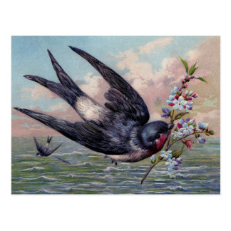 Cute Blue Red Swallow Bird And Pretty Flowers Postcard