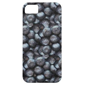 Cute Blueberry Fruit Pattern iPhone SE/5/5s Case