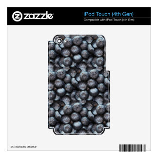 Cute Blueberry Fruit Pattern iPod Touch 4G Skin