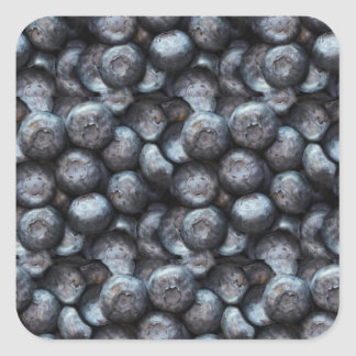 Cute Blueberry Fruit Pattern Square Sticker