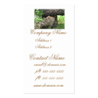 Cute Bobcat Business Card