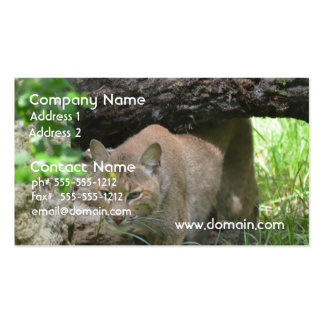 Cute Bobcat Business Card Templates