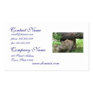 Cute Bobcat Business Cards