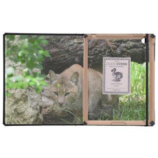 Cute Bobcat Cover For iPad
