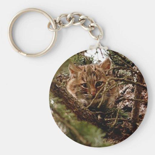 Cute Bobcat Kitten in a Tree Basic Round Button Keychain