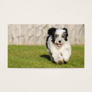 Cute Bobtail Sheepdog Business Card