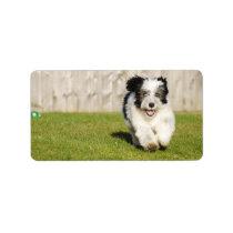 Cute Bobtail Sheepdog Label
