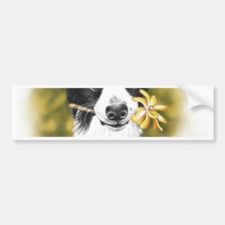 Cute border Collie Bumper Sticker
