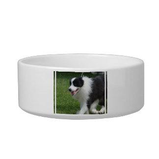 Cute Border Collie Puppy Cat Food Bowls