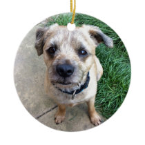 Cute border terrier ceramic ornament
