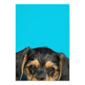 Cute Borkie Puppy 3.5x5 Paper Invitation Card