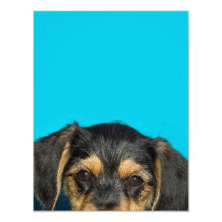 Cute Borkie Puppy 4.25x5.5 Paper Invitation Card