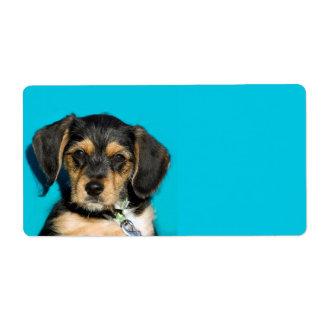 Cute Borkie Puppy Labels