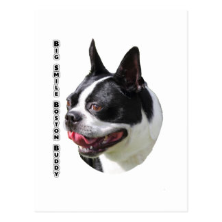 Cute Boston Bull Terrier Multi Products Selected Postcard