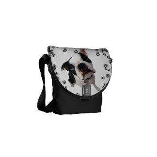 Cute boston terrier dog mini messenger bag