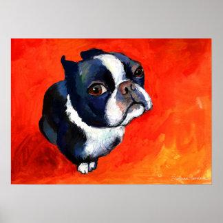 Cute Boston Terrier Dog painting Svetlana Novikova Poster