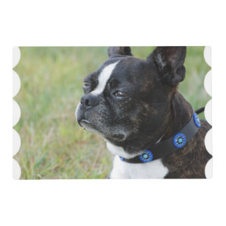 Cute Boston Terrier Placemat