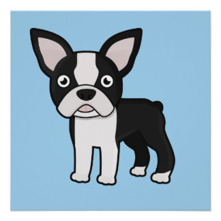 Cute Boston Terrier Poster