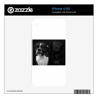 Cute Boxer and Black Lab iPhone 4S Decals