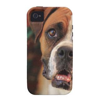 Cute Boxer iPhone 4/4S Case
