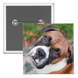 Cute boxer dog buttons