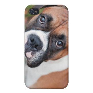 Cute boxer dog iPhone 4/4S case