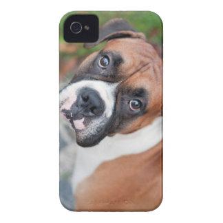 Cute boxer dog iPhone 4 case