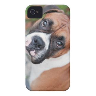 Cute boxer dog iPhone 4 Case-Mate case