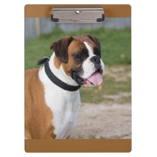 Cute Boxer Dog Photo Clipboard Clipboards
