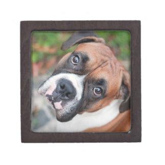 Cute boxer dog premium jewelry box