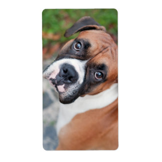 Cute boxer dog shipping label