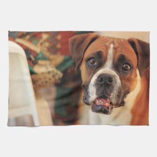 Cute Boxer Kitchen Towel