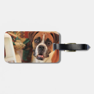 Cute Boxer Luggage Tag