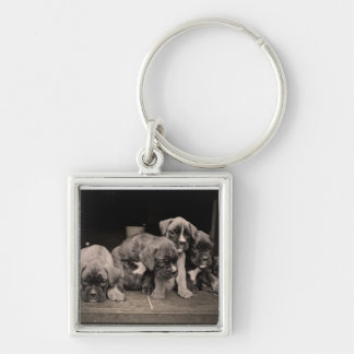 Cute Boxer Puppies Keychain
