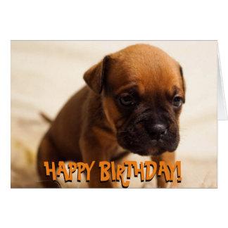Cute boxer puppy birthday card