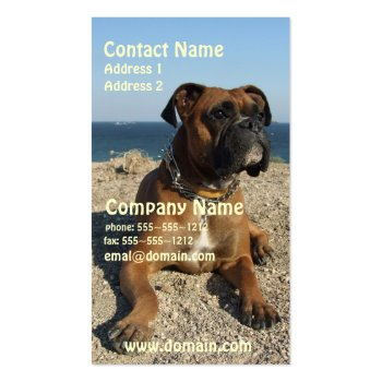 Cute Boxer Puppy Dog Business Card