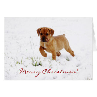 Cute Boxer Puppy Dog Christmas Greeting Card