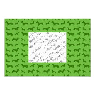 Cute bright green dachshund pattern photo print