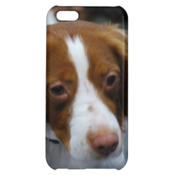 Case Savvy Matte Finish iPhone 5C Case with Brittany Spaniel Phone Cases design