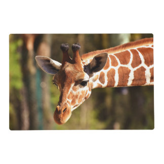 Cute Brown and White Giraffe Face Portrait Placemat