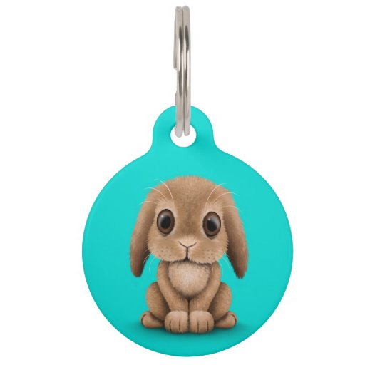 Cute Brown Baby Bunny Rabbit on Blue Pet Nametags