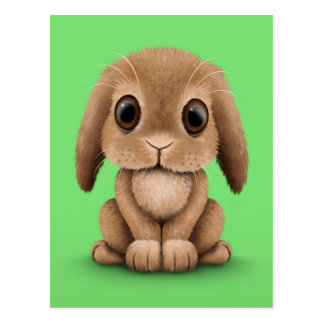 Cute Brown Baby Bunny Rabbit on Green Post Card