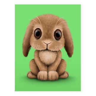 Cute Brown Baby Bunny Rabbit on Green Postcard