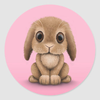 Cute Brown Baby Bunny Rabbit on Pink Classic Round Sticker