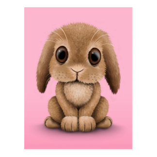 Cute Brown Baby Bunny Rabbit on Pink Postcards