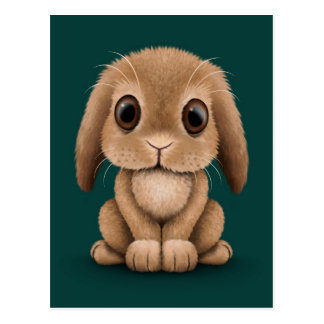 Cute Brown Baby Bunny Rabbit on Teal Blue Post Cards