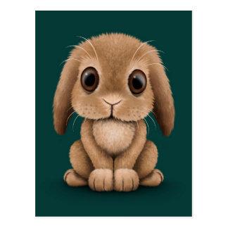 Cute Brown Baby Bunny Rabbit on Teal Blue Postcard